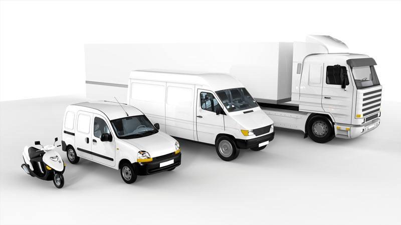 fleet transportation web