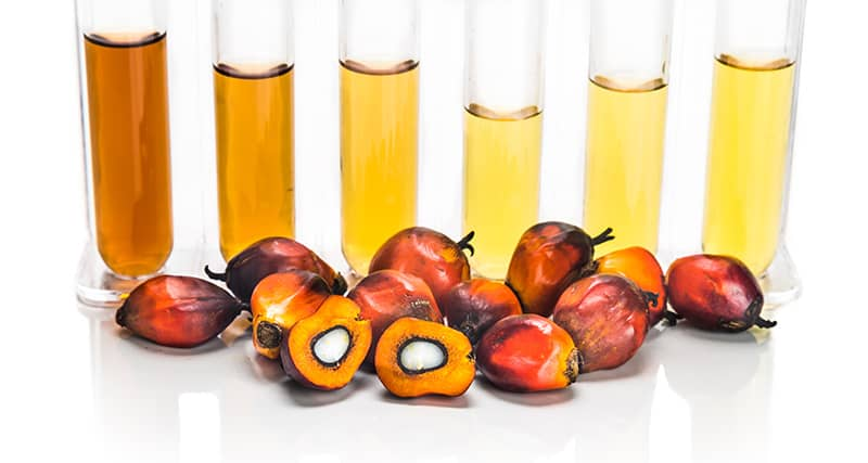 what is biodiesel example