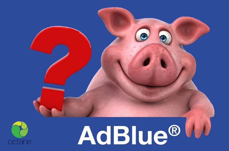 adblue-pig-blog