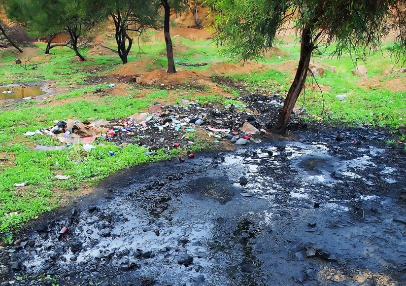 oil-pollution-grass